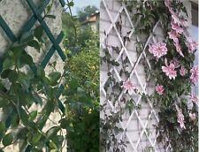 More details for expanding garden pvc plastic trellis climbing plants wall 1.5mx40cm / 5ftx1.3ft