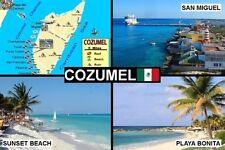 SOUVENIR FRIDGE MAGNET of COZUMEL MEXICO