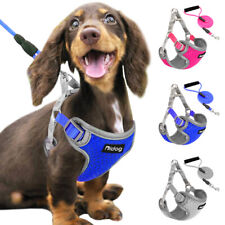 Reflective Pet Dog Step-in Harness and Leash Small Medium Dogs Mesh Walking Vest