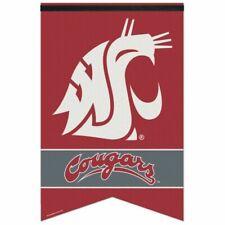 Washington Nationals Premium Felt Banner WinCraft Classic Logo 17x26