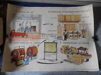 Ancienne Affiche Scolaire La Laiterie Ferme Elevage Collection Rossignol