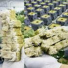 10pcs Rockwool Sheet Block Propagation Cloning Seed Hydroponic Rockwool Cubes BL picture