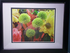 Green flowers (Alium?) by Sylvia Cohen framed matted photograph
