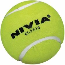 Nivia Yellow Heavy Cricket Hard Tennis Balls (Pack of 6)