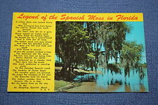 Vintage Postcard Legand of the Spanish Moss in Florida