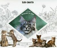 Cats Stamps 2019 MNH Maine Coon Cat Breeds Pets Domestic Animals 1v S/S