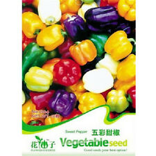 FD1285 Sweet Pepper Seed Colorful Ornamental Pepper Seeds *1 Pack 20 Seeds* ✿