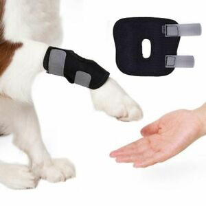 Pet Knee Pads Dog Support Brace for Leg Hock Joint Wrap Breathable Injury