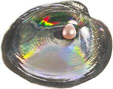 5$ 2013 Palau Auster / Oyster III - Cyrtonaias Tampicoensis Perle / Pearl