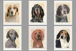 6 Assorted Coonhound Dog Blank Art Note Greeting Cards