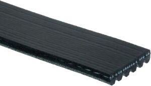 Serpentine Belt-Standard ACDelco Pro 6K860