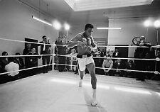 Muhammad Ali Boxe parete Stampa Poster a3 260gsm