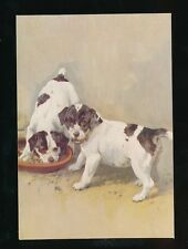 Dogs SMOOTH FOX TERRIER  #16 De Reszke Cigarettes card PPC 127x90mm c1920/30s?