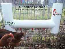Set Gravity Feeder &  Automatic Drinker for Chickens Connect to Mains Pressure
