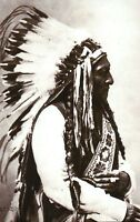 Sitting Bull, Native American Indian Chief of the Hunpaps Sioux, Lakota Postcard