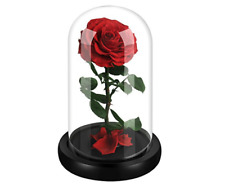 Gift ideas for women Fresh Preserved Red Rose 100% Natural in a Glass doom