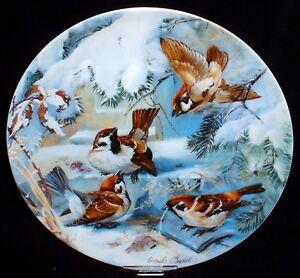Vögel im Winter ~ 6. SPERLINGE ~ Bradex Sammelteller Hutschenreuther