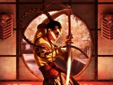 Ninja Girl Japanese Sword Yin Yang Warrior Wall Print POSTER FR