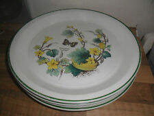 Earthenware 1960-1979 Wedgwood Pottery Dinner Plates