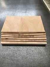Plywood offcuts. 300 X 200 6mm X10