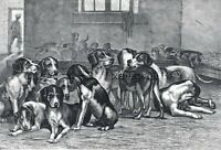 Dog Foxhound Kennel, Interior View, Large 1860s Antique Engraving Print