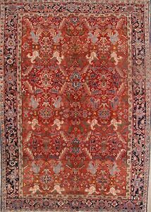 Vegetable Dye All-Over Antique Hand Knotted Area Rug 8x11