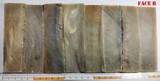 COUTELLERIE * 4 PAIRES DE PLAQUETTES DE POINTE DE CORNE 115 x 30 x 6 mm