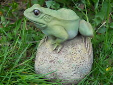 Latex mould of a frog on rock