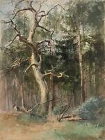 Hans von BARTELS (1856-1913), Kahler Baum an einer Lichtung, 20. Jhd, Aquarell