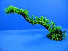 Aquarium Plastic Plants 58x26cm - Ornament Fish Tank Decoration Tropical Moss