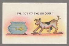 [#17685] VINTAGE POSTCARD DOG LOOKING at FISH in BOWL