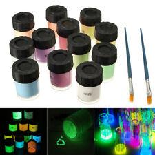 12 Bottle Neon Luminous Acrylic Paint Glow in the Dark Pigment Set + 2 PCS Brush