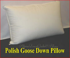 1 STANDARD PILLOW  95% WHITE POLISH GOOSE DOWN  & FEATHERS -100% COTTON CASING