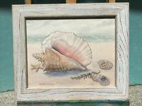 "Watercolor Framed Print Beach Seashell Ocean Signed By Barbara Fleri 12"" x 10 """