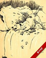 MESS ON A BED NAUGHTY PET PUPPY DOG ART CECIL ALDIN PAINTING PRINT REAL CANVAS