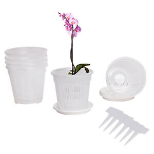 6-Pack Clear Plastic Slotted Orchid Pots Flower Planters w/ Saucers&Plant Labels