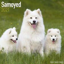 Samoyed Calendar 2021 Premium Dog Breed Calendars