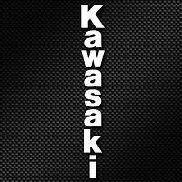 2 KAWASAKI VERTICAL FORKS Decals Stickers Motorbike Motorcycle Fairing Helmet