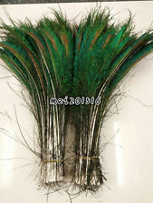 10pcs beautiful 12-14 inches/30-35 cm natural symmetry peacock feathers sword