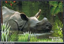 Blijdorp 150 jaar voorgefrankeerde briefkaart - postcard - neushoorn -rhinoceros