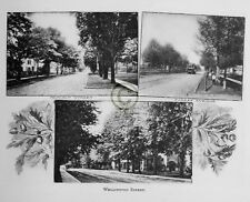 """ST.THOMAS Ontario CANADA """"Streets"""" in 1906 Reprint on Pro Glossy Paper"""