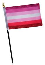 Lesbian Striped LGBTQ+ Gay Pride Edged Small Hand Waving Flag