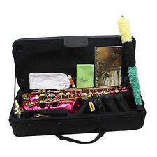 LADE Red Brass Engraved Eb E-Flat Alto Saxophone Sax with Case+Care Kits G0N2