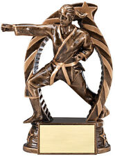 """1 Female karate trophy, new design 5.5"""" tall, with engraving, martial arts"""