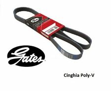 Correa GATES poli-V acanalada 4PK1183