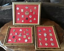Military Cap Badges and collar flashes staybrite Framed