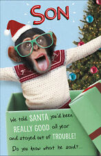 Son We Told Santa Funny Christmas Greeting Card Humour Xmas Cards