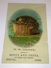 Old Antique Kitten in Basket! Boots & Shoes Advertising Victorian Trade Card! CT