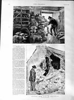 Old Antique Print 1888 Life Ireland Family House Eviction Barricade Scene 19th