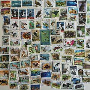 100 Different Animals on Stamps Collection
